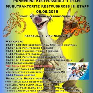Viru-Nigula punnvõrr, PunKK 2. Bühne